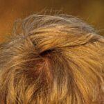Strapaziertes und Geschädigtes Haar erkennen und Abhilfe schaffen – Zauberhaft