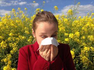Allergien -Schwarzkümmelöl